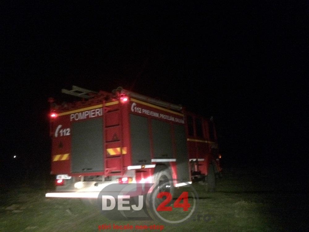 incendiu Nicula pompieri vegetatie