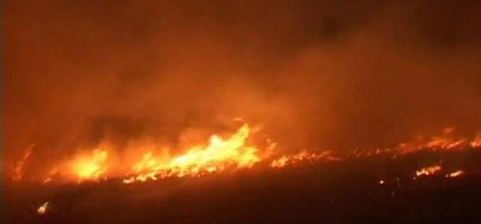 Primăria Dej avertizează! Arderea resturilor vegetale este interzisă de lege