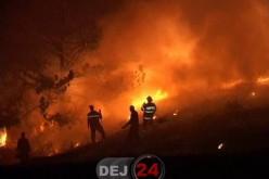 Incendiile de vegetație, un pericol! Aproape 1500 de intervenții ale pompierilor, în primele trei luni ale anului