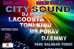 """Mega party la Toroc de """"Ziua Internațională a Tineretului"""""""