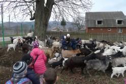 """Elevi dejeni, în vizită la Centrul Turistic Cășeiu, în prima zi din """"Școala Altfel"""" – FOTO"""