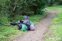 """""""Împreună pentru un oraș mai curat"""", acțiune de ecologizare la Dej"""