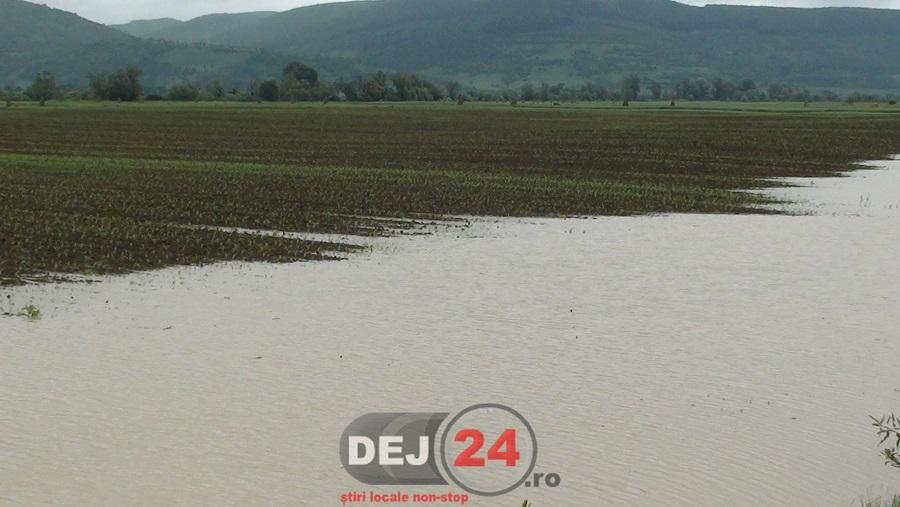 inundatii Vad (2)
