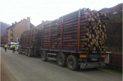 Bărbat din Dej, depistat de polițiști în timp ce transporta ilegal lemn