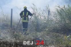 INCENDIU DE VEGETAȚIE între Dej și Mica. Au intervenit pompierii din Dej