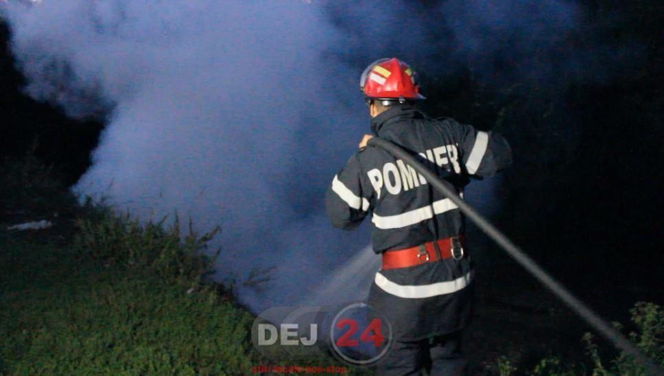 pompieri vegetatie Fizesu Gherlii