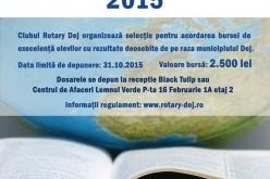 """Au început înscrierile pentru """"Bursa de Excelență"""" a Rotary Club Dej"""