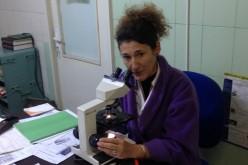 INTERVIU: Singurul medic anatomopatolog din Dej este femeie – FOTO