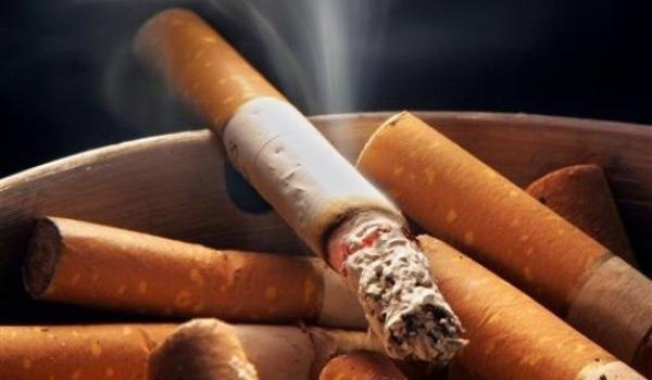 tigara tutun