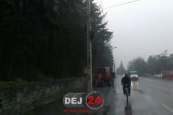 Pericol pe o stradă din Dej. Un copac era să cadă peste firele de electricitate – FOTO