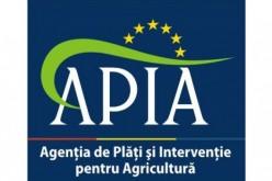Pregătiri pentru depunerea cererilor de subvenție APIA în județul Cluj