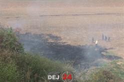 INCENDIU de vegetație la Cetan. Au intervenit pompierii din Dej – FOTO