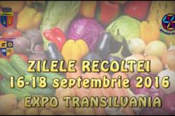 Două săptămâni până la startul Zilelor Recoltei 2016 de la Cluj-Napoca
