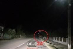 INCONȘTIENȚĂ în Mica – Cai lăsați liberi pe șosea. Șoferii, ÎN PERICOL – VIDEO