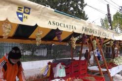 Târgul Produs de Cluj la Gherla! Cum s-au distrat gherlenii și ce au putut cumpăra – FOTO