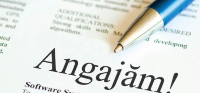ANOFM: Peste 700 locuri de muncă vacante în județul Cluj