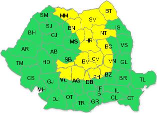 cod-galben-ninsoare-anm-romania