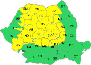 cod-galben-ninsori-1