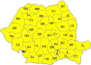 cod-galben-ninsori-2