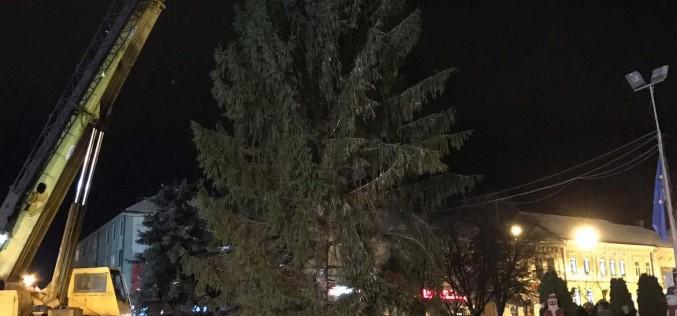 Dej – Se demontează instalaţiile de pe bradul din Piaţa Bobâlna