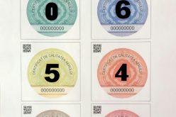 Cum arată certificatele care vor înlocui timbrul de mediu, care ar putea deveni obligatorii din toamnă – FOTO