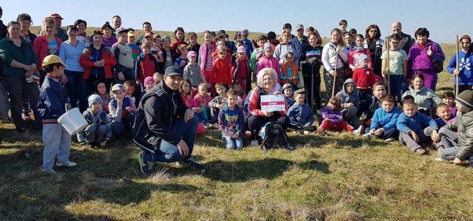 Acțiune de împădurire la Mica! Au participat zeci de elevi, părinți, profesori și autorități – FOTO