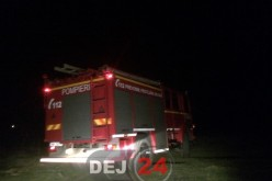 Incendii de vegetație în Mănăstirea și Nicula. Au intervenit pompierii dejeni – FOTO