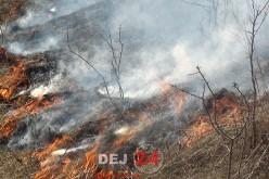 Pompierii din Dej intervin pentru a treia oară la pădurea din Sântejude-Vale