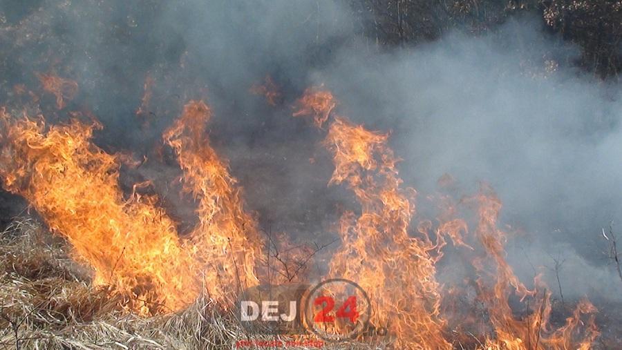 incendiu Santioana (3)