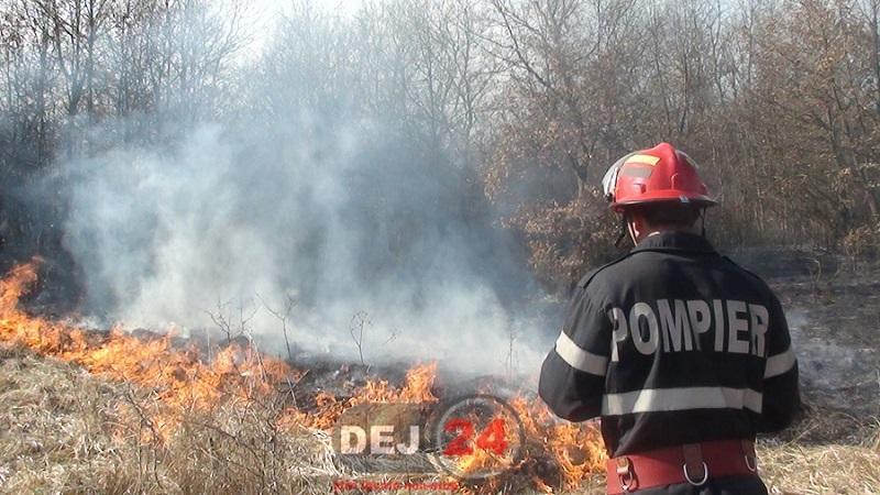 incendiu Santioana (4)