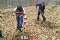 Elevii Școlii Gimnaziale Speciale Dej au plantat copaci pe Valea Tărpiului – FOTO