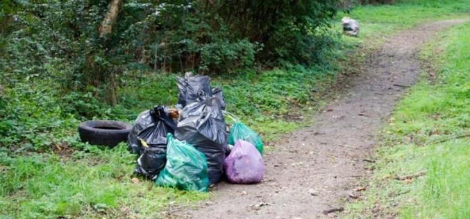 Locuitorii comunei Mica se pregătesc de ecologizare!