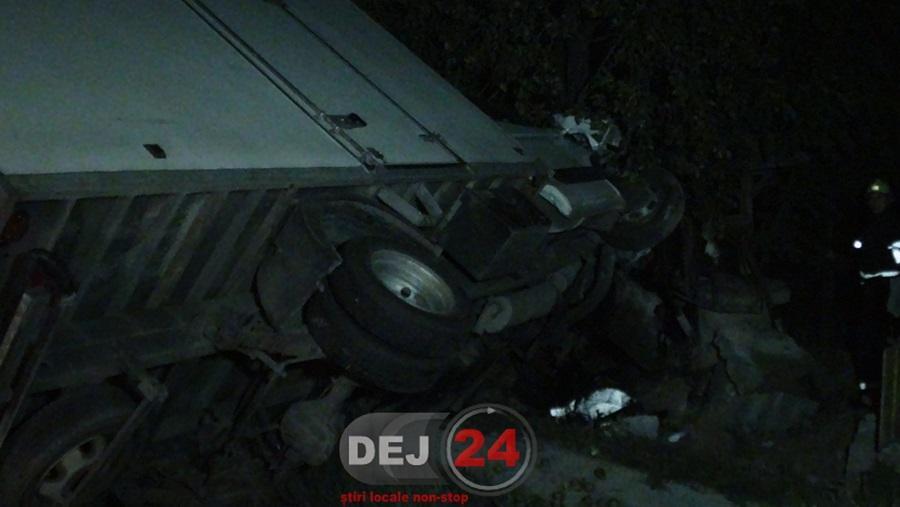 accident Urisor autoutilitara in gard (3)