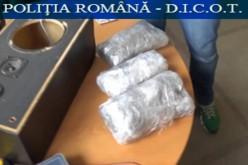 BILANȚ: Mai multe tone de cocaină brută au ajuns anul trecut în custodia Poliției Române
