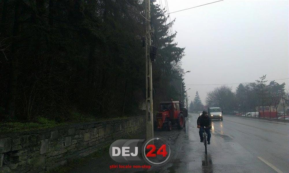 Copac fire de electricitate stalp Dej (3)
