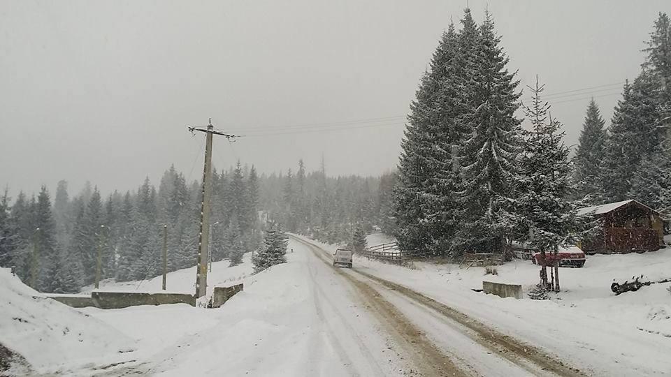 zapada deszapezire polei ninsoare antiderapant Cluj