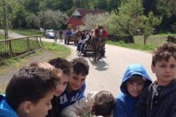 Școala Altfel | Elevi din Dej, activități inedite la Cășeiu – FOTO