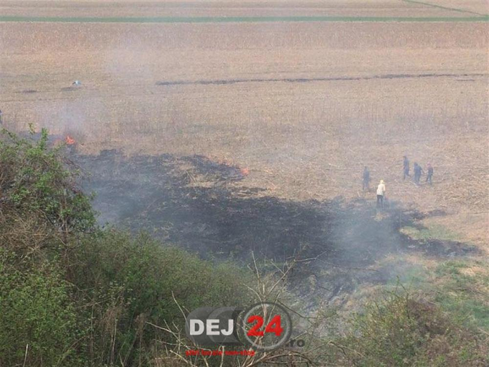 Incendiu vegetatie Cetan pompieri (1)