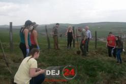 Dej – Tineretul liberal a plantat copaci în apropierea Torocului – FOTO/VIDEO
