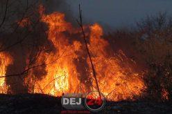 Primăria Dej avertizează! Arderea resturilor vegetale este permisă doar după obținerea unor avize