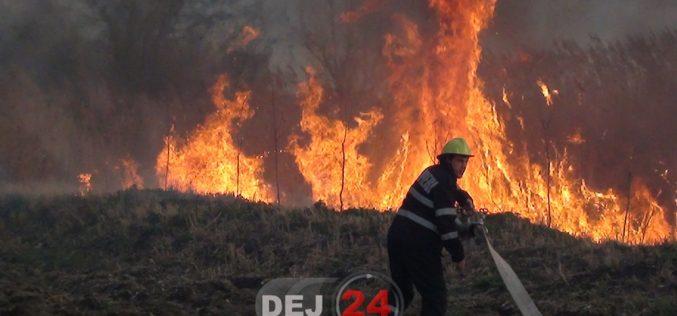 INCENDIU de pădure la Sântioana! Intervin pompierii din Dej