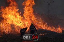Incendiile de vegetație, frecvente în județul Cluj. 21 de intervenții ale pompierilor în doar trei zile