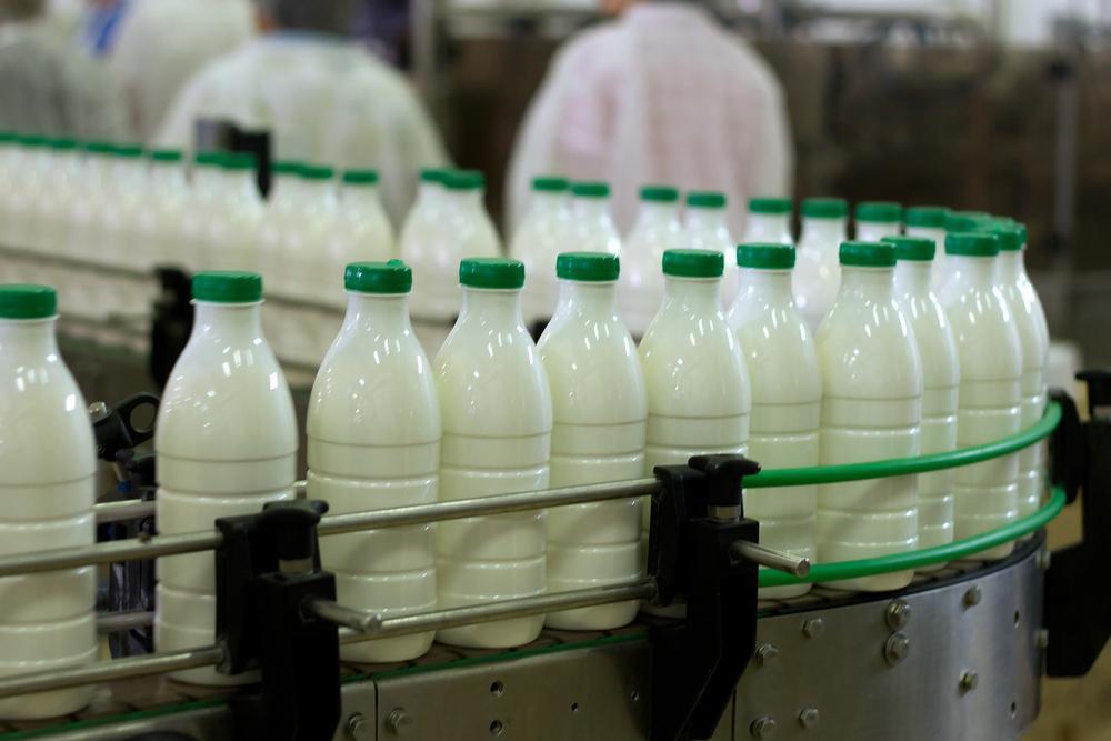 lapte fabrica
