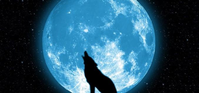 Eclipsă parțială de Lună, în această seară! Va fi vizibilă și din România