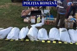 Trei ani de închisoare pentru traficanții din Unguraș prinși cu sute de kilograme de cannabis – FOTO