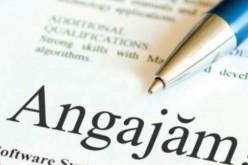 ANOFM: Aproape 750 de locuri de muncă vacante în județul Cluj