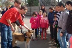 """ASR Principesa Maria a României, în vizită la Asociația """"Dog Assist"""" Cluj"""