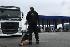 Clujean urmărit de polițiști, depistat la ieșirea din țară