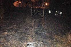 DEJ | Incendiu de vegetație în apropierea blocurilor din cartierul Dealul Florilor – FOTO