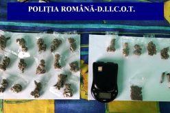 Percheziții în județul Cluj, la persoane bănuite de TRAFIC DE DROGURI – FOTO